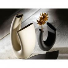 Vase Anemone